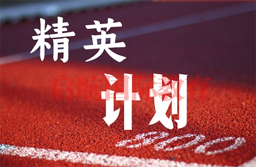 上海精英计划